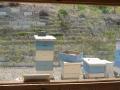 Behausung der Bienenvölker Teil 1