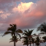 Sonnenuntergang_Palmen